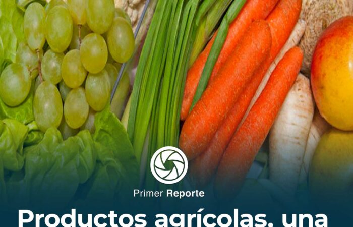 Productos agrícolas, una alternativa saludable
